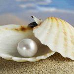 pearl, inci