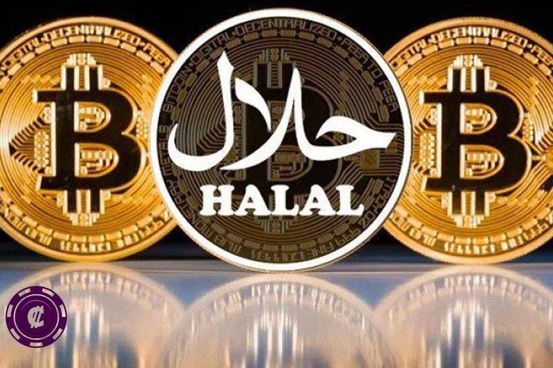 halal coin